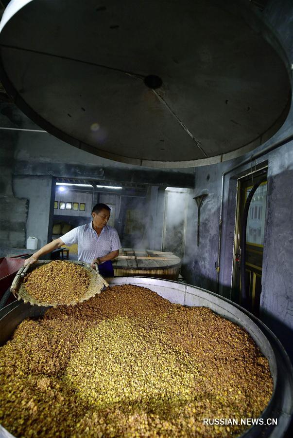 Производство традиционного гаолянового вина в Эньши