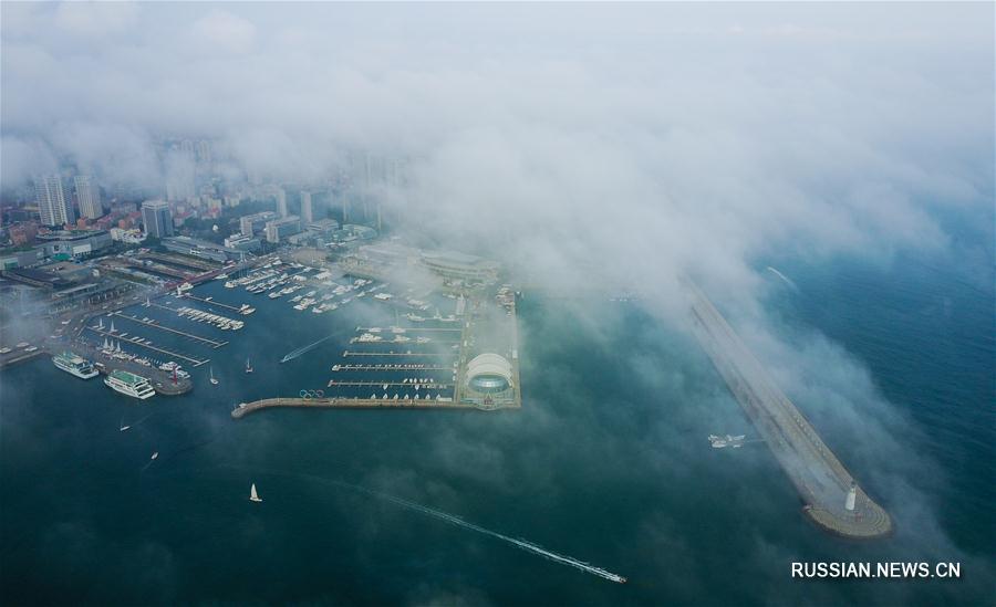 Туман над Циндао