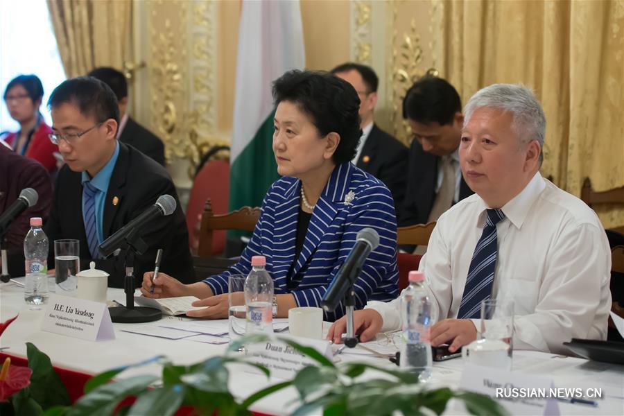 (XHDW)刘延东与匈牙利各界友好人士举行座谈