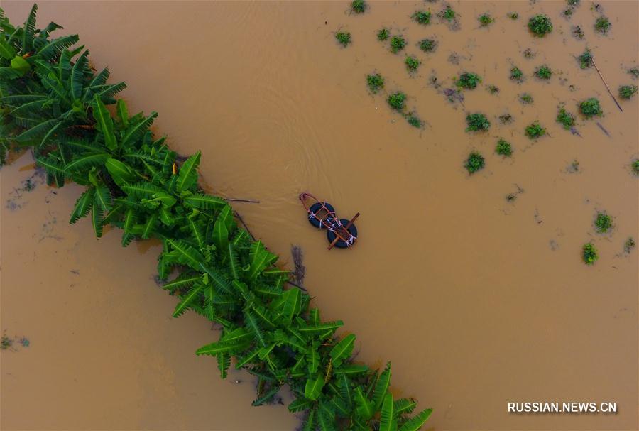 Из-за проливных дождей в Гуанси пострадали более 1 млн человек