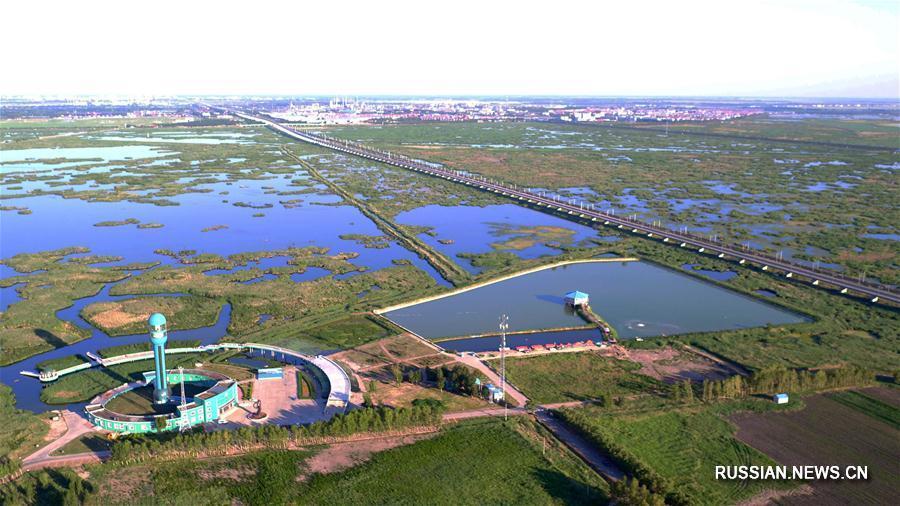 Заболоченные земли на северо-востоке Китая