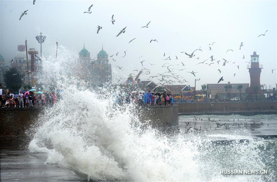 Морская набережная привлекает жителей Даляня в жаркие дни