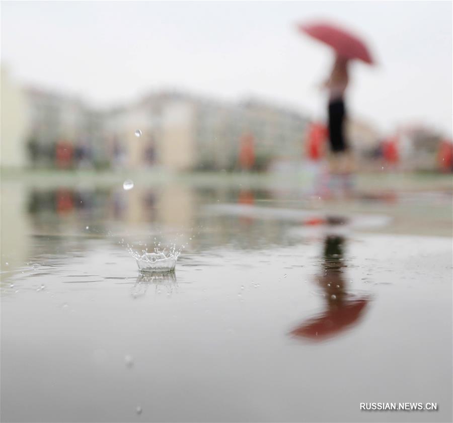 Прогулка под летним дождем