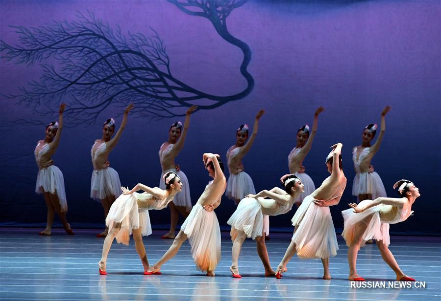 """В Токио представили балетную постановку """"Красноногий ибис"""" в исполнении китайских артистов"""