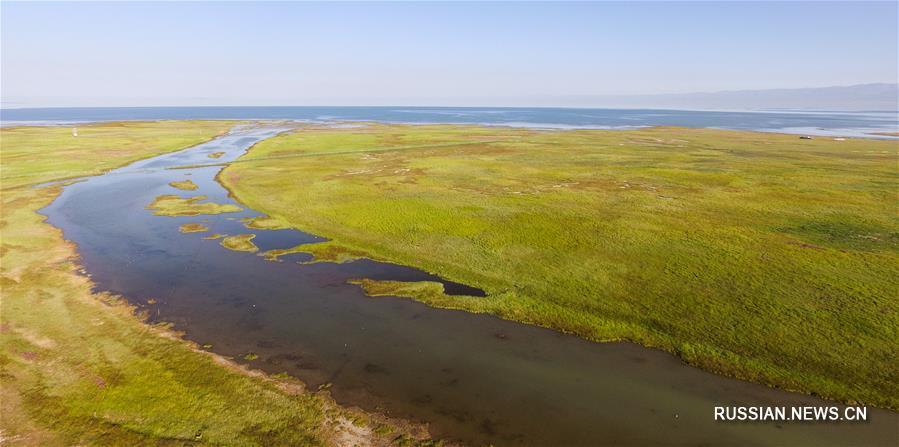 После сезона паводков озеро Цинхай стало равно по площади 7 озерам Сиху