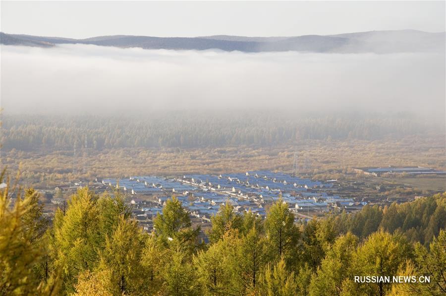 Осень пришла на Большой Хинган
