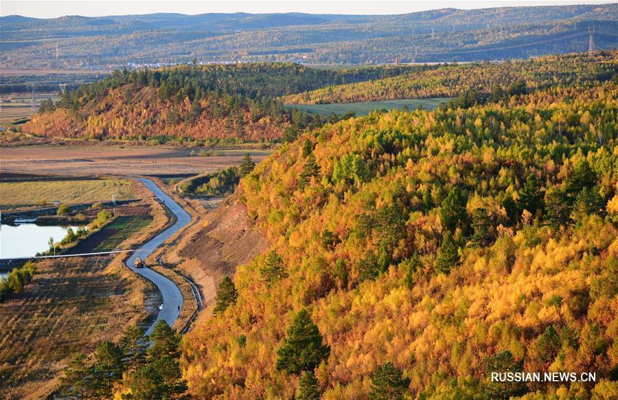 Золотая осень в провинции Хэйлунцзян