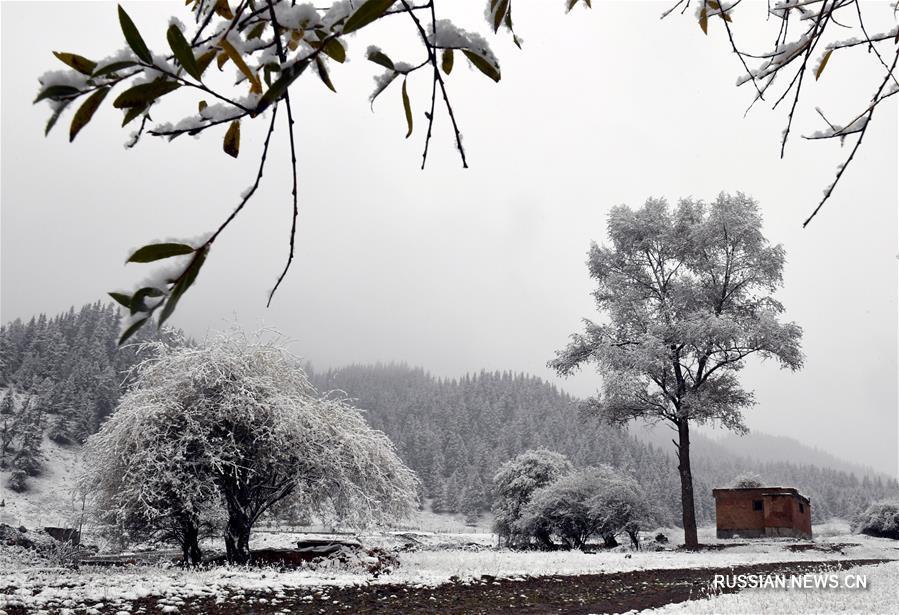 Уезд Цилянь под снегом