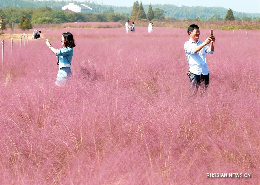 Все краски осени в Китае