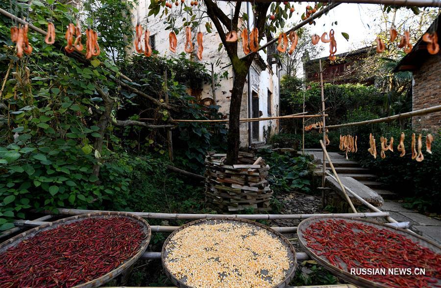 Сушка осеннего урожая в деревне Хуанлин