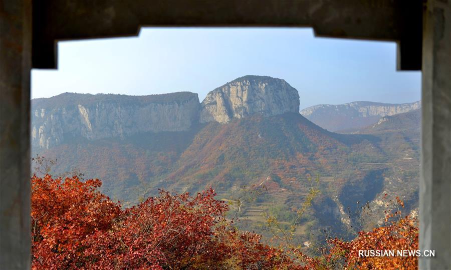 Осенние листья окрасили красным горы Тайшань