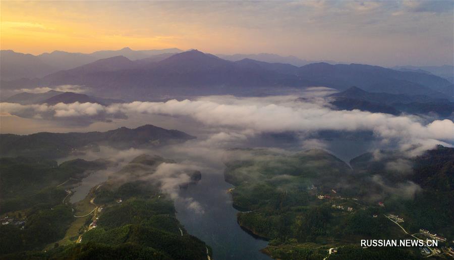 Бамбуковое и облачное моря в горах Дабешань