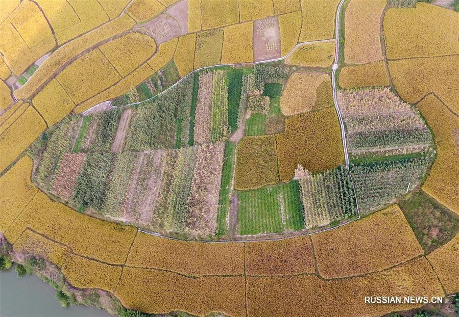 Осенние картины уезда Шанлинь