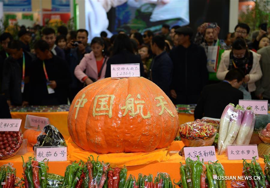 Открылась Янлинская ярмарка достижений высоких и новейших агротехнологий