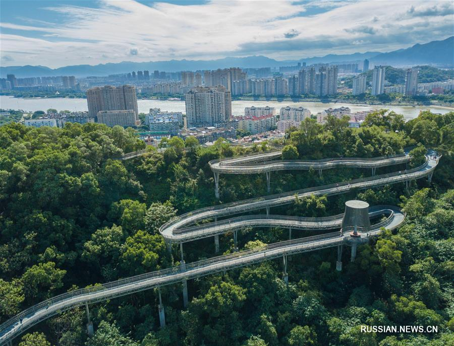 Новая высотная смотровая дорожка через лес вблизи Фучжоу