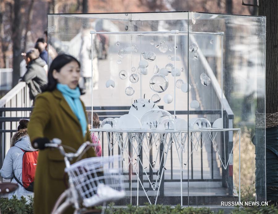 В провинции Хубэй проходит выставка работ молодых скульпторов