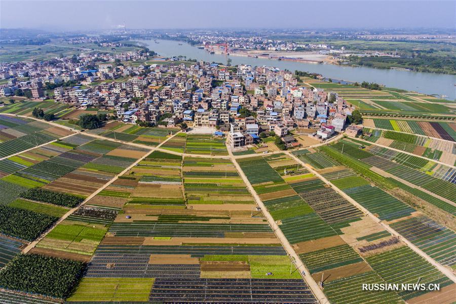 Лоскутное одеяло разноцветных полей в уезде Тяньдун