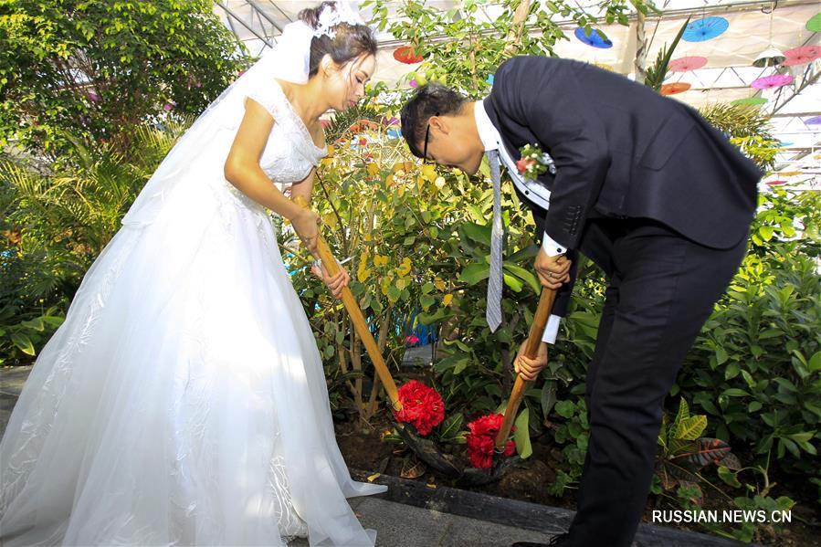 Коллективная свадьба в лесопарке Иньчуаня