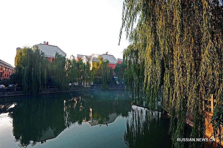 Чжэцзян 33-й год подряд лидирует среди провинций и автономных районов Китая по среднедушевому доходу сельских жителей