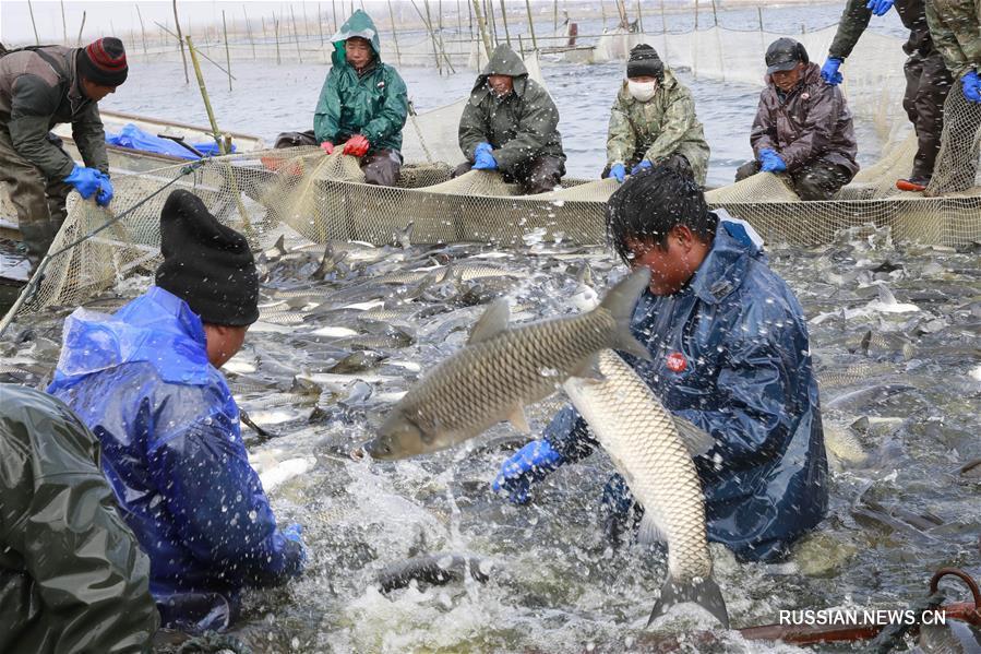 Рыбная ловля в ледяной воде озера Сяньдэнху