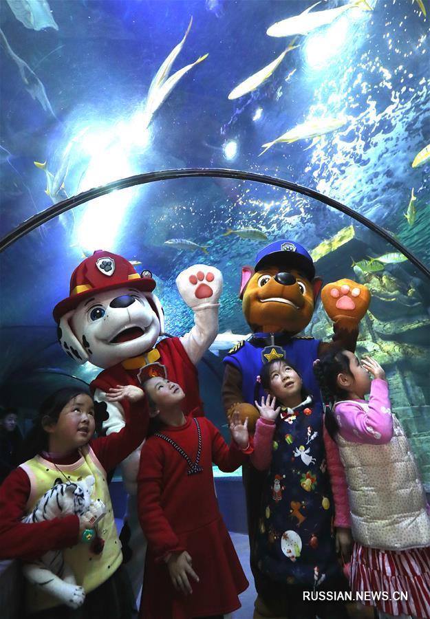Семейная экскурсия на тему экологии океана в шанхайском океанариуме