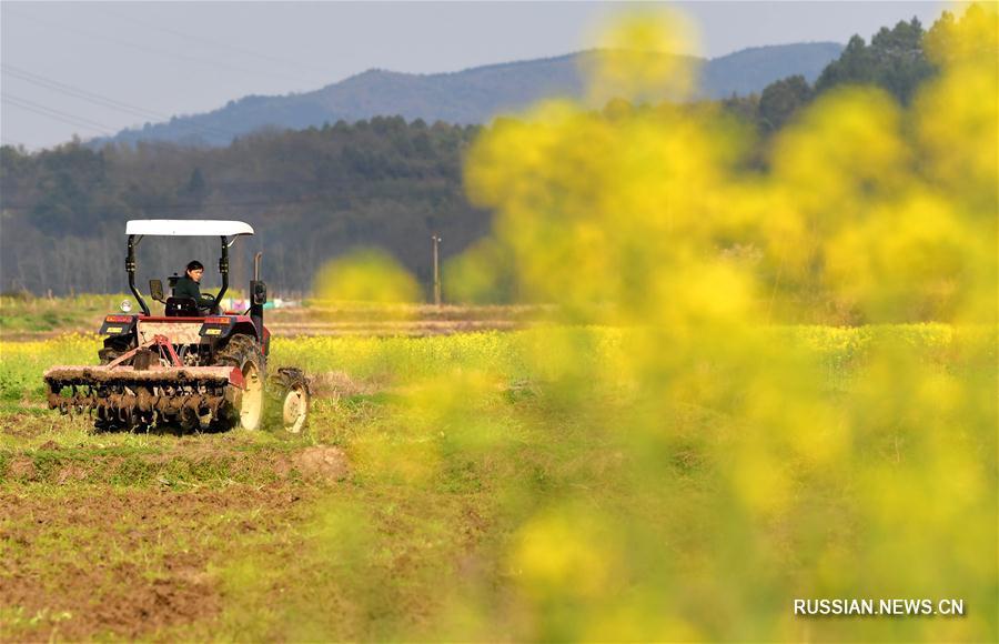 В провинции Цзянси готовятся к весенним пахотно-посевным работам
