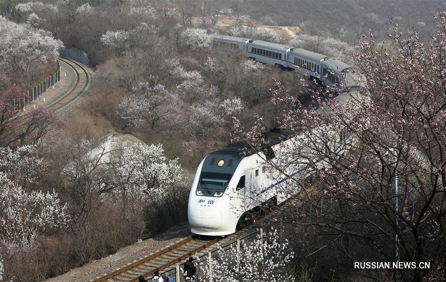 Поезд на фоне весенних пейзажей