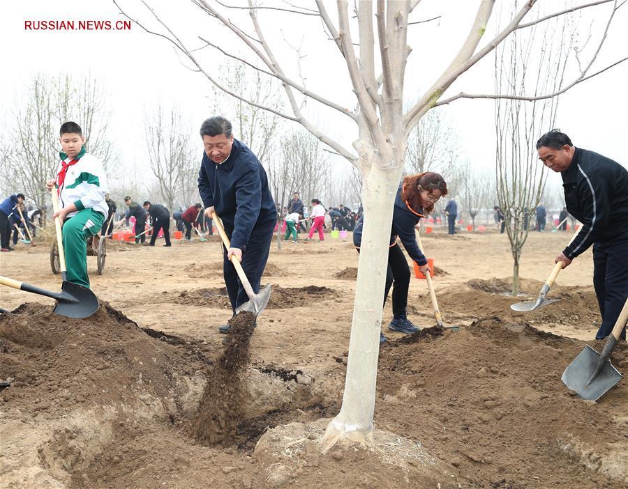 (时政)党和国家领导人参加首都义务植树活动