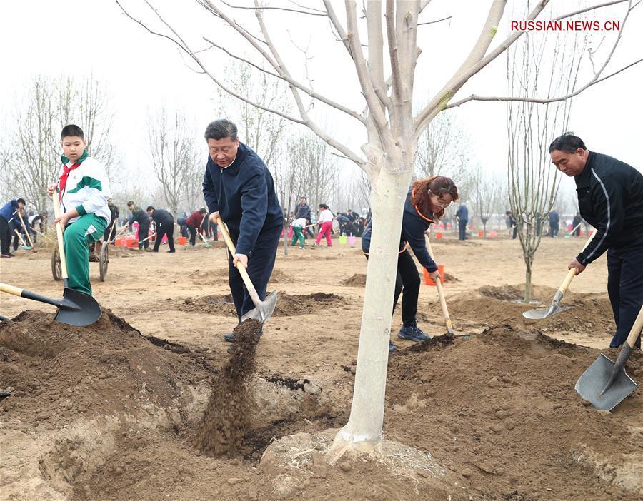 Руководители Китая приняли участие в добровольной посадке деревьев