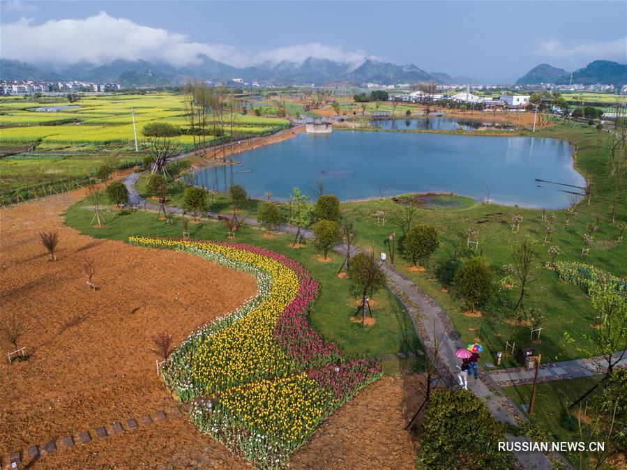 Пейзажи водно-болотных угодий в провинции Чжэцзян