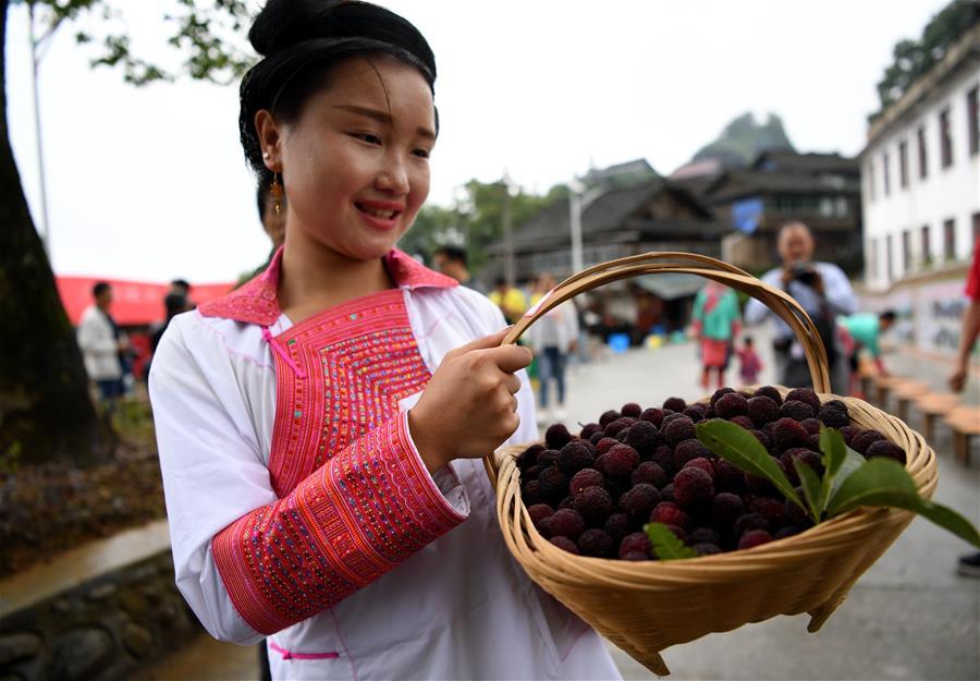 Фестиваль красной восковницы в уезде Жунцзян