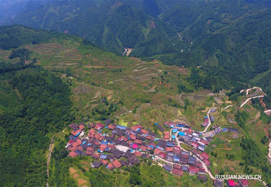 Террасированные поля на юге Китая