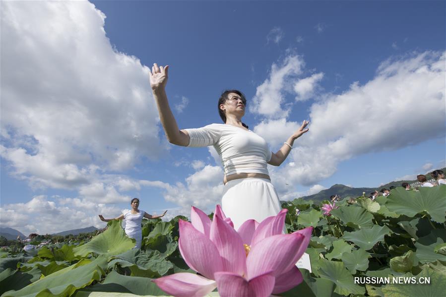Йога среди цветущих лотосных плантаций