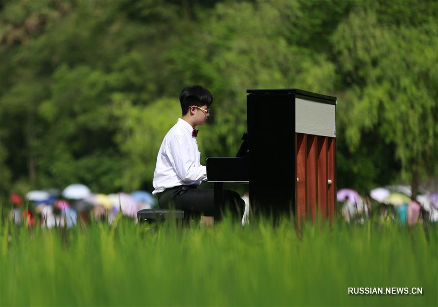 "Концерт пианистов на горах и в полях ландшафтного парка ""Улинъюань"""