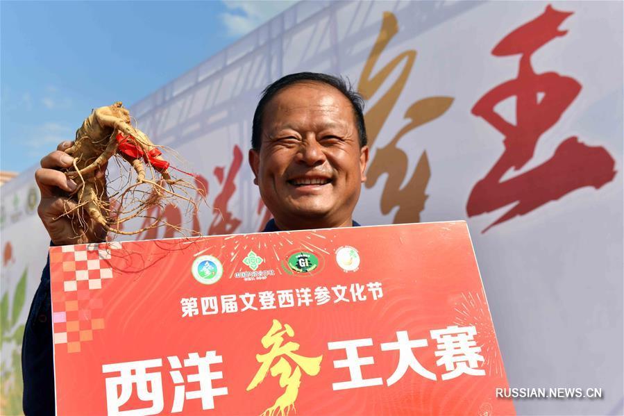 """В провинции Шаньдун выбирали """"царя женьшеня"""""""
