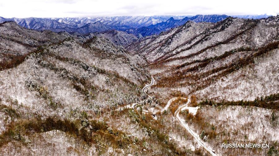 Красота гор Циньлин после первого снегопада