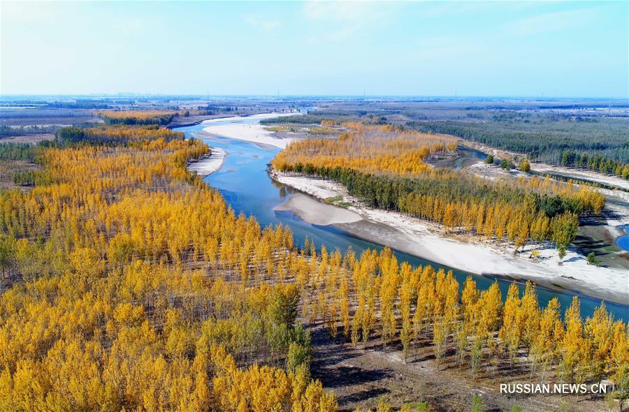 Осенние пейзажи в районе реки Луаньхэ на севере Китая