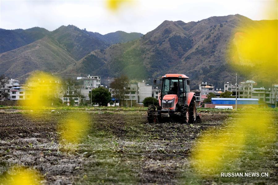 Весенние полевые работы в Китае