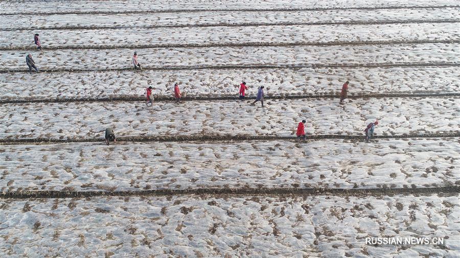 В сельских районах Китая началась весенняя пахота