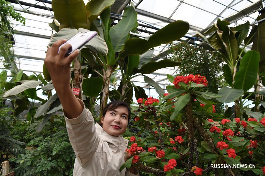 Ботанический сад в Синьцзяне ждет туристов