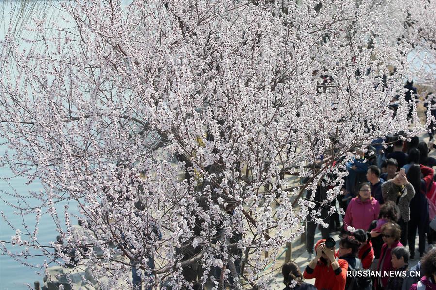 Весенняя прогулка по парку Ихэюань