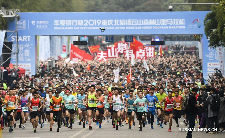 Легкая атлетика -- Цзиньюньшаньский горно-лесной марафон 2019 в Чунцине