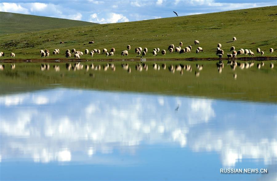 Тибет -- один из самых экологически чистых регионов планеты