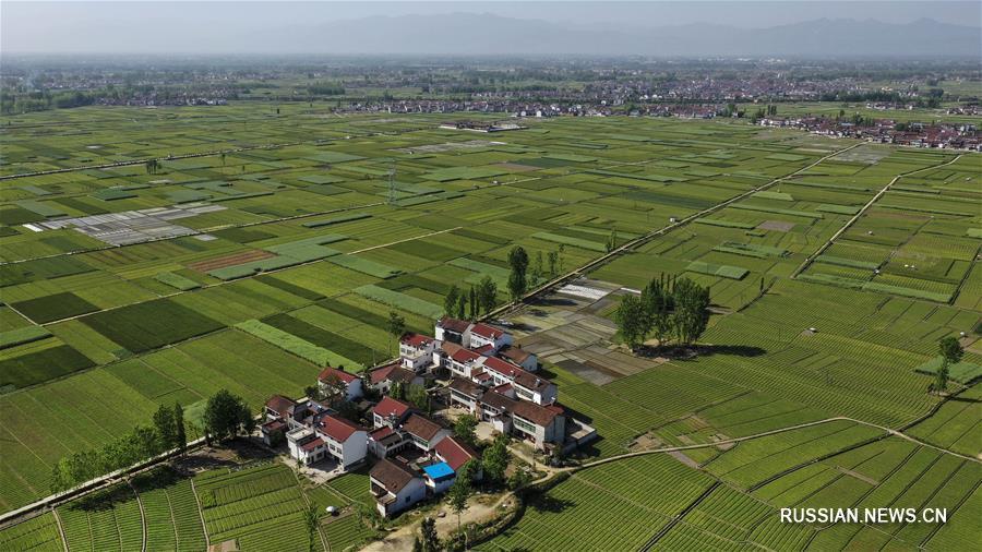 Развитие производства и борьба с бедностью в уезде Чэнгу