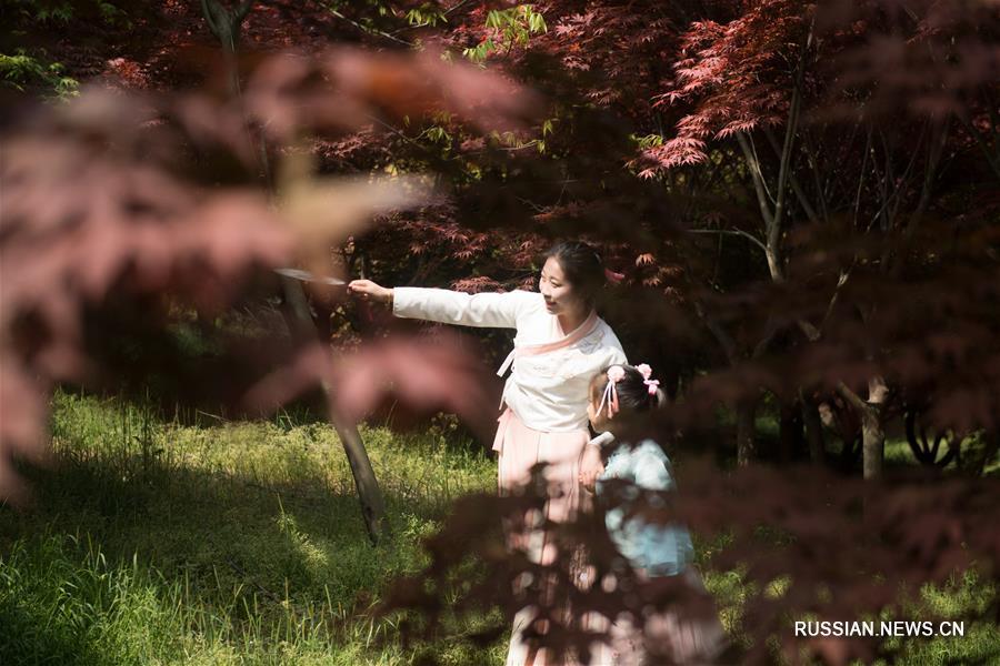 Прогулка среди красных кленов в Хучжоу