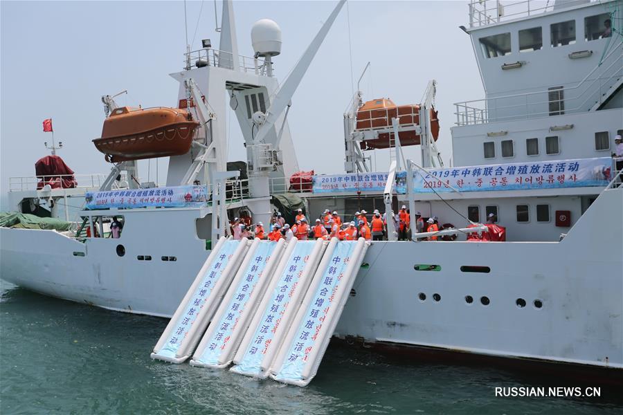 Активисты Китая и Республики Корея выпустили в Желтое море 400 тыс мальков