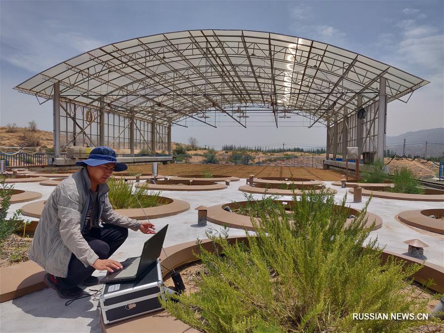 Единственная в пустынях Китая система крупных весовых лизиметров прошла приемочную проверку