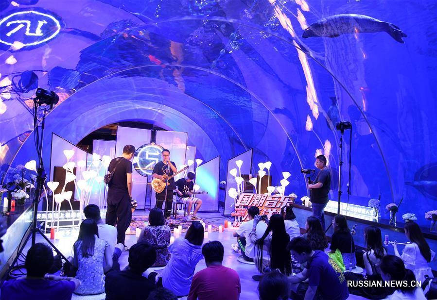 Подводный концерт в океанариуме г. Циндао