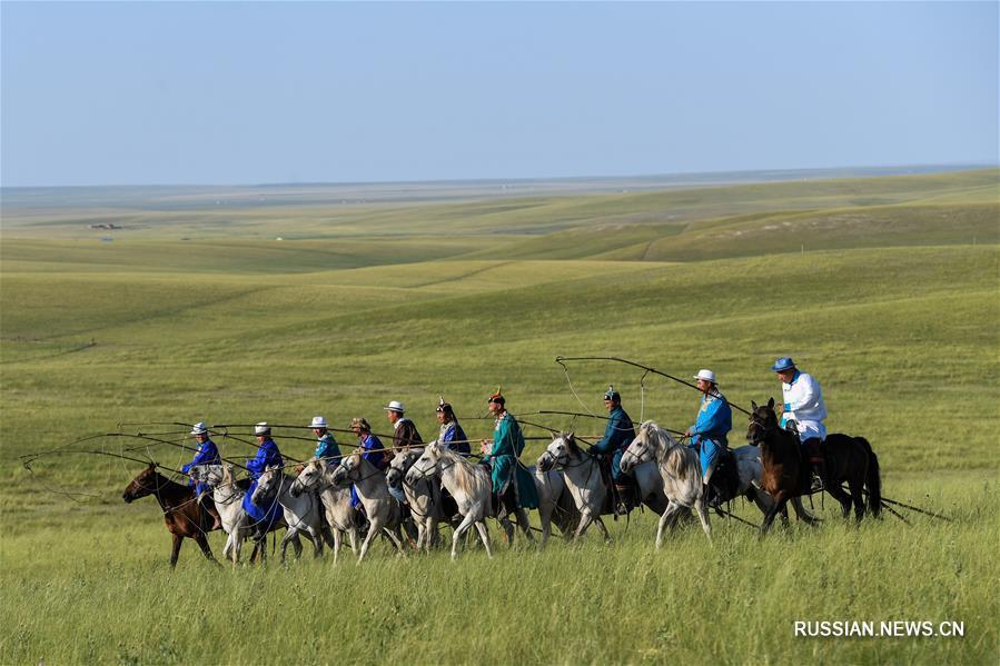 Монгольские арканщики в степях
