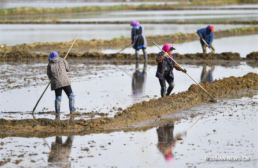 Майские хлопоты крестьян провинции Цзилинь